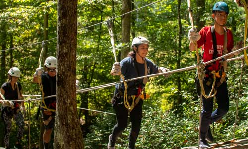2 Hour Zipline Tour