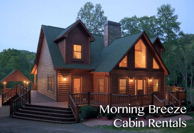 Mountain top blue ridge mountain top cabin rentals for Large cabin rentals north georgia