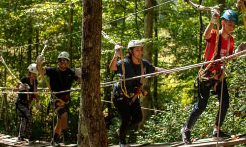 One-Hour Zipline Tour